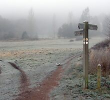 Frosty Footpath by Michael Bryce