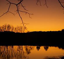 Pond at dusk by Jamie Goolsby