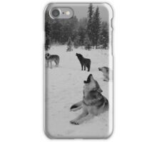 Winter Wolf Pack iPhone Case/Skin