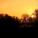 winter sun by grimbomid