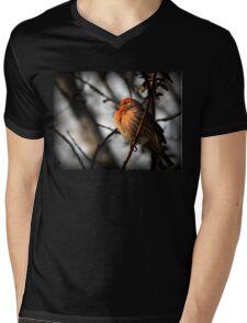 House Finch (male) Mens V-Neck T-Shirt