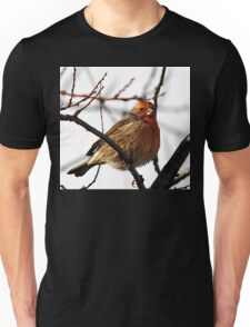House Finch (male) 2 Unisex T-Shirt