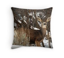 Mountain Mule Deer Throw Pillow