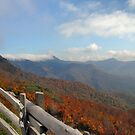 Blue Ridge Parkway by M. Greenleaf
