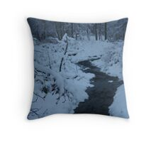 A lonely stream Throw Pillow
