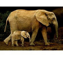 Strolling With Mom Photographic Print