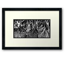 Legacy Framed Print