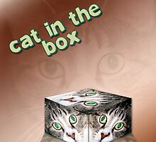 Cat in a Box by MDossat