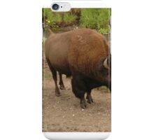 Bison in Yellowstone National Park iPhone Case/Skin