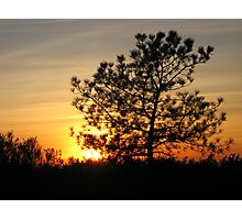 torrey pine sunset Photographic Print
