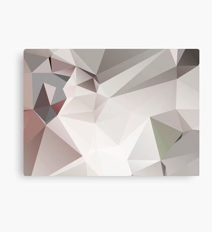 Abstract white gray triangles Canvas Print
