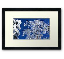 Snow on the Treetops Framed Print