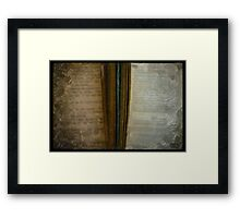 2 Books painted Framed Print