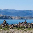 Midday at Mono Lake by SunnyJames