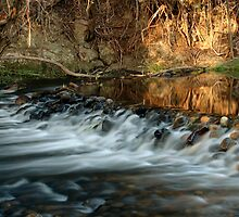 Rubicon Swimming Hole by Leanne Robson