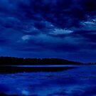 """Nightime Blues"" by Phil Thomson IPA"