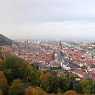 Heidelberg Old Town by Grem
