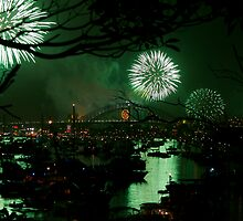 SYDNEY HARBOUR GREEN by CRSPHOTO