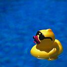 Ducky on blue by Lachlan Doig