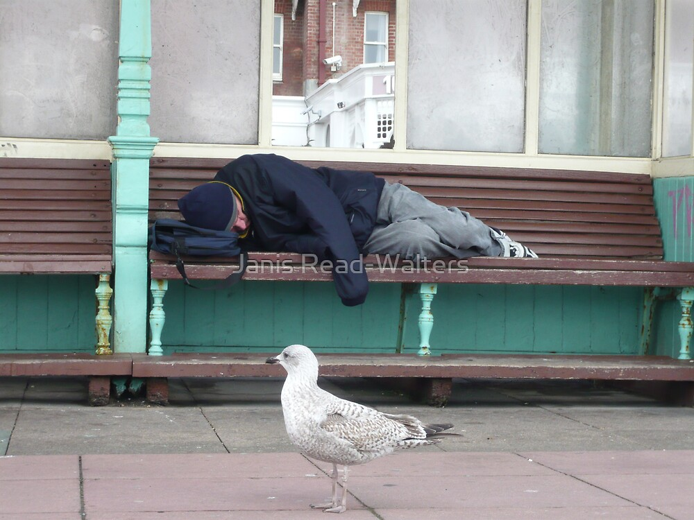 down and out in brighton by Janis Read-Walters