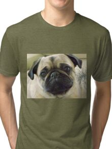 Pepe the Pug Tri-blend T-Shirt