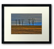 Companions for Life Framed Print