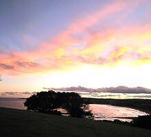 Day Ends - Sydney Beaches, Mona Vale Headland,Sydney Australia by Philip Johnson