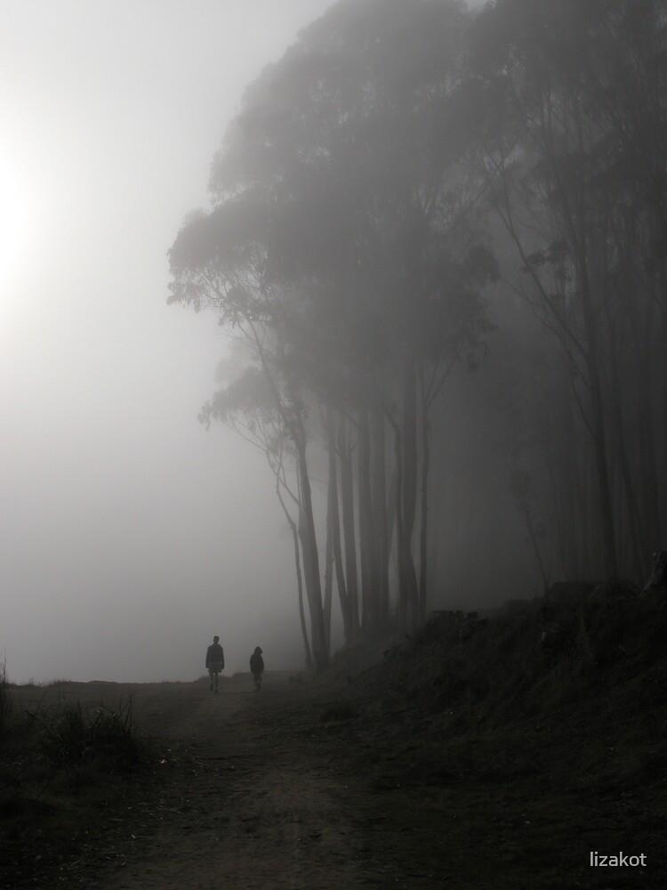 Lonesome Walk by lizakot