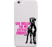 My friend on paws iPhone Case/Skin