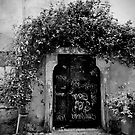 Trastevere Door by Tiffany Dryburgh