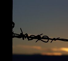 Barbed Wire at Sunset by amandameans