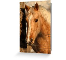 Golden Shadows Greeting Card