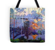 Late afternoon rocks Tote Bag