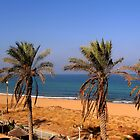 Palm tree beach, Naharyah by day by Sarah  Levinson