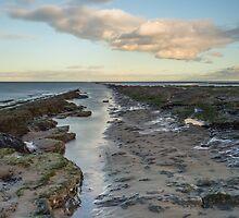 Redcar Rocks by Michael Stubbs