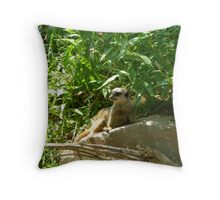 Lazing in the shade Throw Pillow