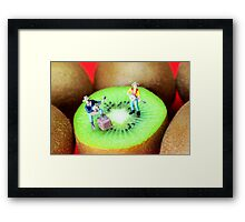 Band Show On Kiwi Fruits Framed Print