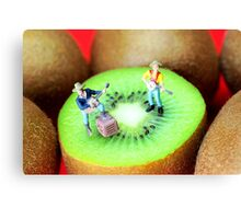 Band Show On Kiwi Fruits Canvas Print