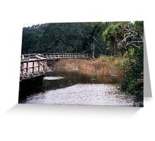 Deep South Living Greeting Card