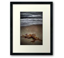 Blackmans Bay Beach Framed Print