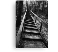 (looking up) The long way to the top Canvas Print