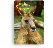 """G'day from Australia"" Canvas Print"
