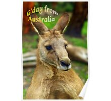 """G'day from Australia"" Poster"