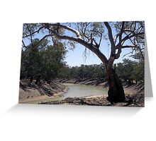 Darling River during Draught Greeting Card