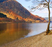 Loch Lubnaig by Sue Martin