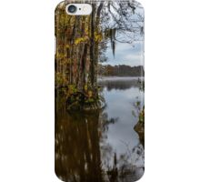 Fog On The Water iPhone Case/Skin
