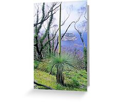 Grasstree and South-east Point Greeting Card
