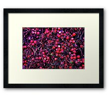 Red Bubble Heads Framed Print