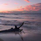 Pre Dawn - Red Beach by Barbara Burkhardt