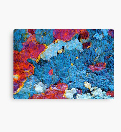 Infrared Satellite Image Canvas Print